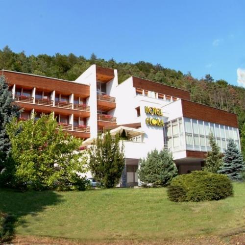 hotel-flora